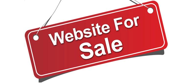 Leesburg FL Web Design For sale